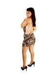 Girl in nice dress. Royalty Free Stock Photos