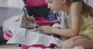 Girl nursing cat stock video footage