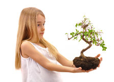Girl offers tree Stock Photo