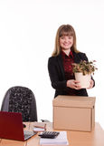 Girl office about desktop keeps indoor flower in pot Royalty Free Stock Images