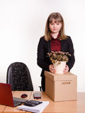 Girl in office about desktop keeps indoor potted plant Royalty Free Stock Images