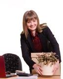 Girl in office puts flower room on your desktop Stock Image