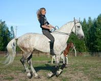 Free Girl On A Horse Stock Photos - 22096703