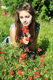Girl On Meadow With Poppy Stock Images