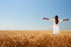Girl On Wheat Field Stock Photography