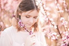 Girl in orchard stock photography