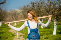 The girl in the orchard. Young woman enjoys working in the orchard Stock Photography
