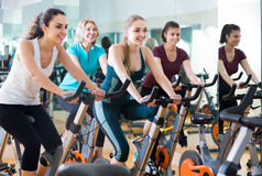 Girl and other females working out in sport club. Brunette girl and other females working out in sport club Stock Image