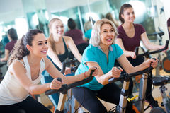 Girl and other females working out in sport club. Brunette russian girl and other females working out in sport club Royalty Free Stock Photography