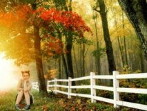 Girl Outdoor Autumn Sitting Royalty Free Stock Image