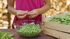 Girl outdoors shelling peas into a glass bowl stock footage