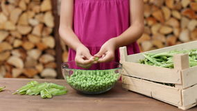 Girl outdoors shelling peas stock footage