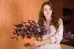 Girl with oxalis Royalty Free Stock Image