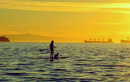 Girl on the paddleboard with her dog at sunset Stock Photos