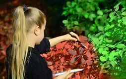 Girl paint in red color of the foliage of trees Stock Images