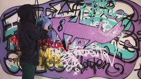 Girl painting graffiti fox stock video