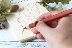 Girl paints patterns autumn leaf Royalty Free Stock Photo
