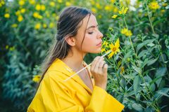 The girl paints a yellow flower. The process of reproduction of the plant. Health and longevity with medicinal plants. The girl paints a yellow flower. The royalty free stock photo