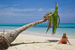 Girl and palm tree. On the Bavaro Beach, Dominican republic stock images
