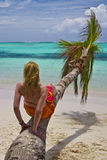 Girl and palm tree. On the Bavaro Beach, Dominican republic Stock Image