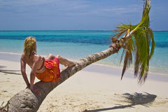 Girl and palm tree. On the Bavaro Beach, Dominican republic Royalty Free Stock Photo