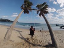 Girl on a palm tree rope swing at the beach. Stock Photo