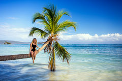 Girl on the palm tree stock photo