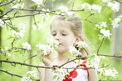 Girl in the park Royalty Free Stock Photos