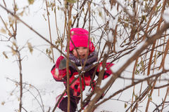 Girl in park among bushes Royalty Free Stock Photography