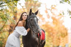 A girl in the park clings to the horse and smiles. Stock Photography