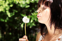 Girl in park with a dandelion Stock Image