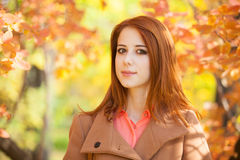 Girl in the park. Redhead girl in the autumn park Stock Images