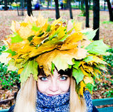 Girl in a park in Wienke of autumn leaves in the park. Close-up. stock photo