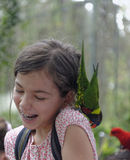 Girl with parrot on her shoulder Royalty Free Stock Image