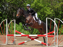 Girl participating in a show jumping Royalty Free Stock Image