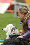 Girl patting dog. Girl patting a white and black purebred border collie dog Royalty Free Stock Images