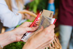Girl pays for cash on the market Stock Image