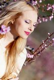 Girl in peach garden Stock Photos