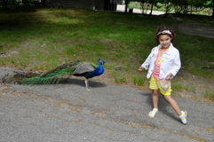 Girl and peacock Royalty Free Stock Image