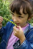 The girl with peas Royalty Free Stock Images