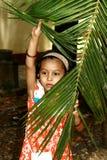 Girl peeking through palm. A young girl peeking through a palm frond Royalty Free Stock Images