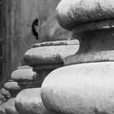 A girl is peeping from among the huge stone colums of the Basilica of Esztergom, Hungary, black and white royalty free stock image