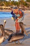 Girl and pelicans on the ocean. Close up stock photography