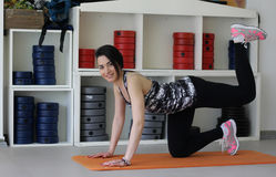 Girl with perfect body in fitness hall Stock Images