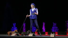 Girl performing with two trained dogs. MOSCOW, RUSSIA - FEBRUARY 21, 2015: Performance with trained dogs. Young female animal trainer giving commands and dogs stock video