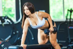A girl performs a dumbbell with one hand in the slope using a bench. exercise on the broadest back muscles with. Dumbbells side view royalty free stock photos