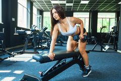 A girl performs a dumbbell with one hand in the slope using a bench. exercise on the broadest back muscles with. Dumbbells side view stock photography