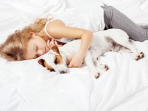 Girl with pet at home Stock Image