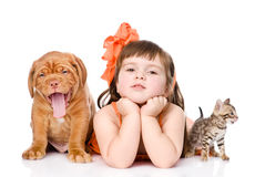 Girl with pets - dog and cat. isolated on white background Stock Photos