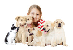 Girl and pets. On a white background Stock Photos